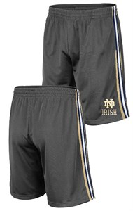 Notre Dame Fighting Irish Men's Grey Santiago Synthetic Training Shorts