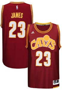 huge discount 01870 4d656 Youth Lebron James Cleveland Cavaliers Wine Adidas Hardwood ...